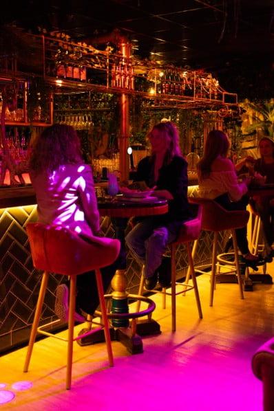 Mensen aan de bar